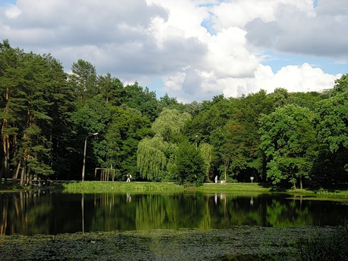 ГПУ вернула в госсобственность земли в национальном парке «Голосеевский»