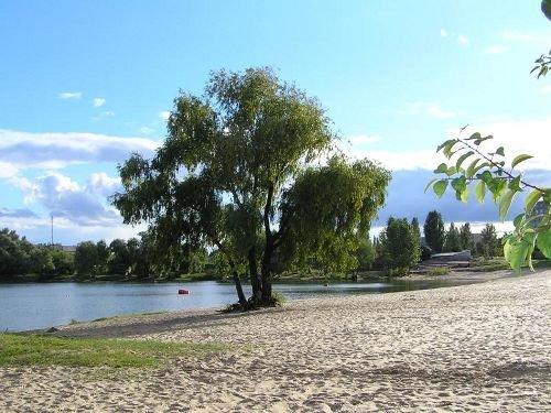 У озера Тельбин появится парк им. Виктора Цоя