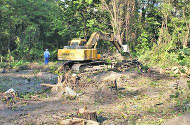 В Голосеевском районе рубят деревья под строительство многоэтажек